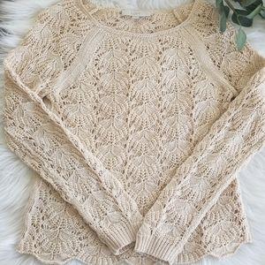 LOFT Crocheted Sweater